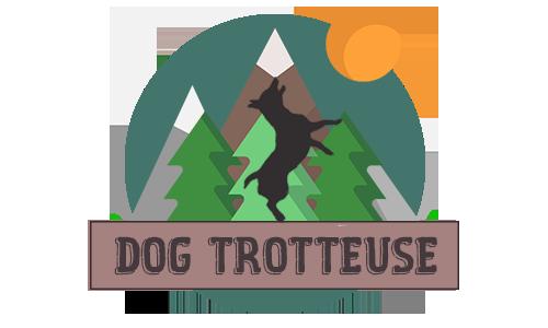 Dog Trotteuse June Partenaire Canigourmand